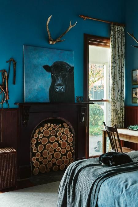 Rich-blue-bedroom-walls-ACS0517p43