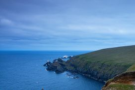 Hermaness, Shetland Islands. Scotland