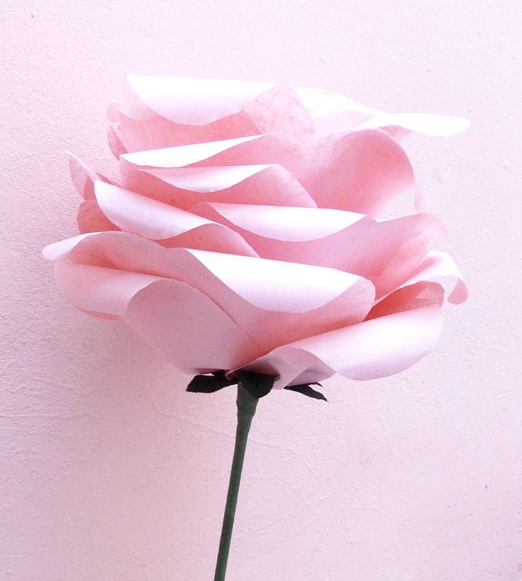 Soft pink rose (35 LEI la Nunny.sDiary.breslo.ro)