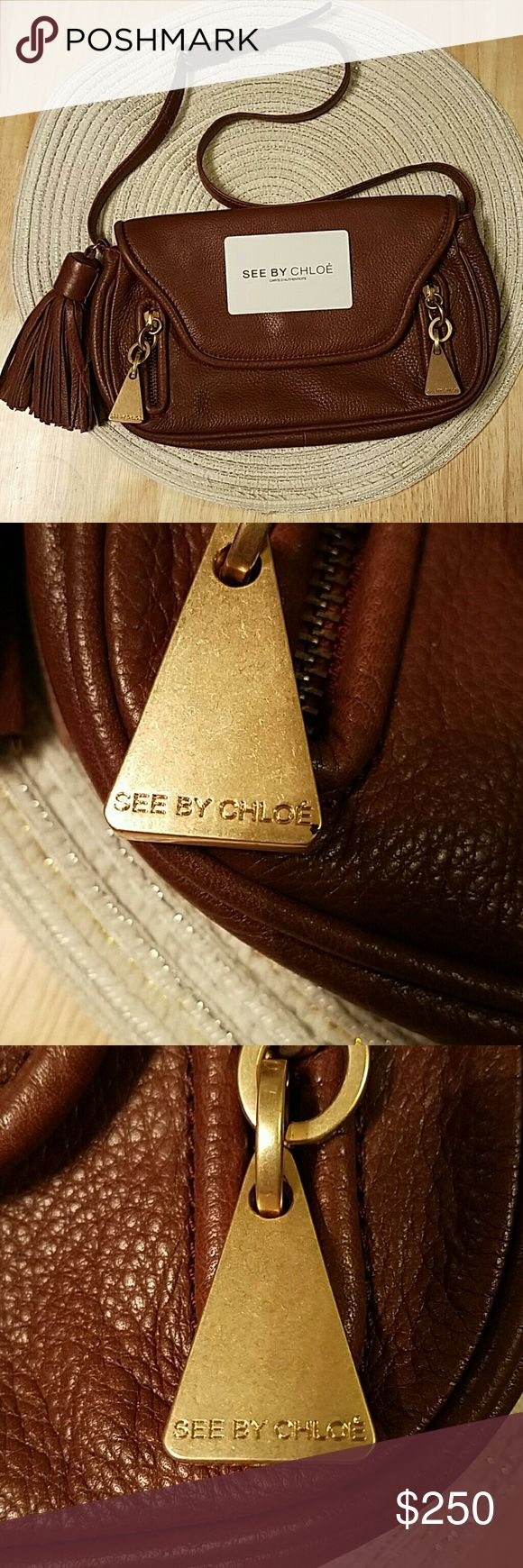 SEE BY CHLOE Brown Leather Tassel Shoulder Bag SEE BY CHLOE Brown Leather Tassel Shoulder Bag. Gorgeous condition, used x1! Comes with authentication card.   10.25 x 6 x 1.5 ish See by Chloe Bags
