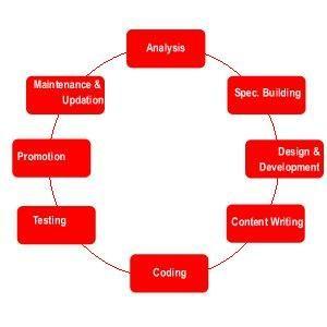 Website Design and Development Updated Process