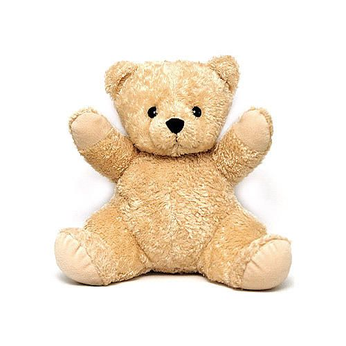 Dex Baby Mommy Bear With Womb Sound | BabiesRUs  @Vanessa Tomani  - This is it? right?