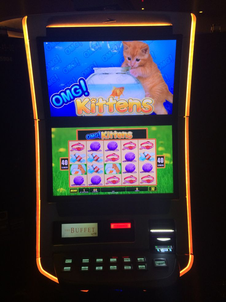 hoyle casino game Slot Machine