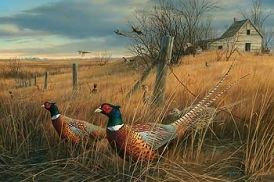 """ Memory Lane "" - Pheasants - Print by Jim Hautman"