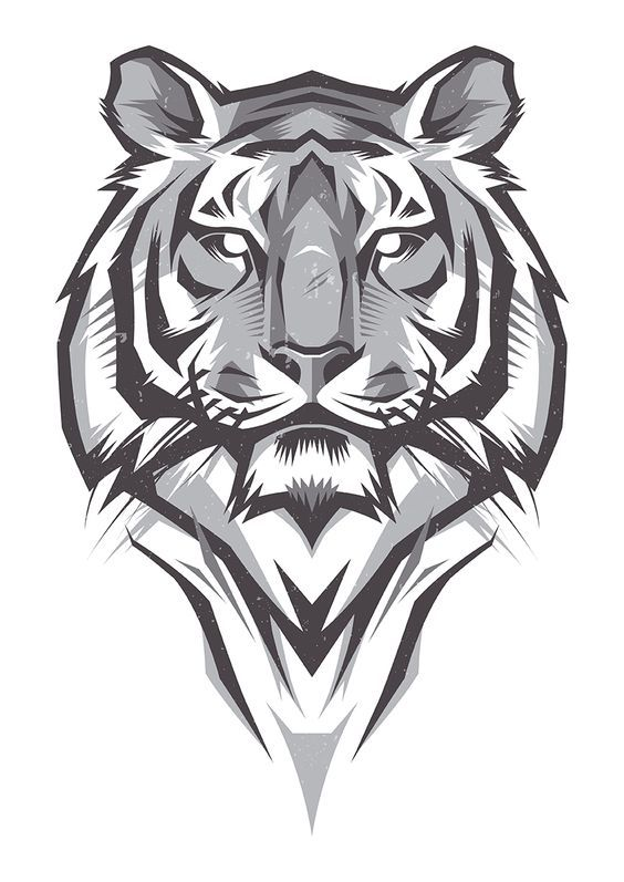 Shulyak Brothers - tiger illustrations: