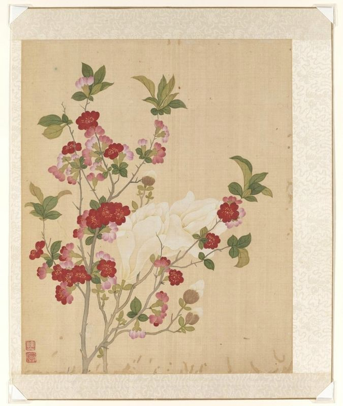 Magnolia and quince, from the flowers of the twelve months: March, Yun Bing (Chinese, 1670 - 1710), 1670-1710, Qing dynasty (1644-1911). Album leaf, Ink and colors on silk. Asian Art Museum, The Avery Brundage Collection, B65D49.d. Photo: © Asian Art Museum.