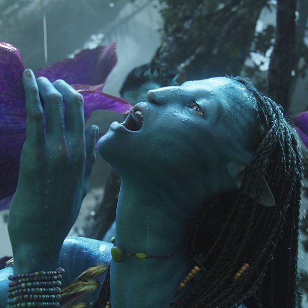 108 Best Avatar The Movie Images On Pinterest: 83 Best Avatar Images On Pinterest