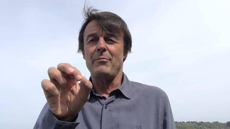 Halte au massacre des abeilles