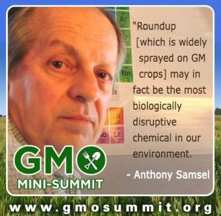 """Glyphosate Causes Cancer: EPA """"Trade Secret"""" Sealed Files Reveal Cancer Link Known Back in the 1970s"""