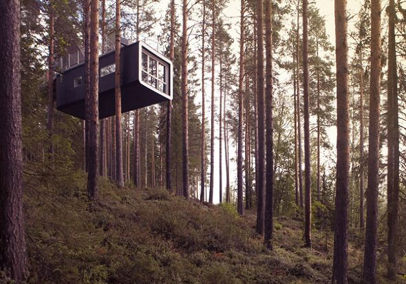 Treehotel, Sweden via The Common Pursuit (you can book via this site to stay there!)