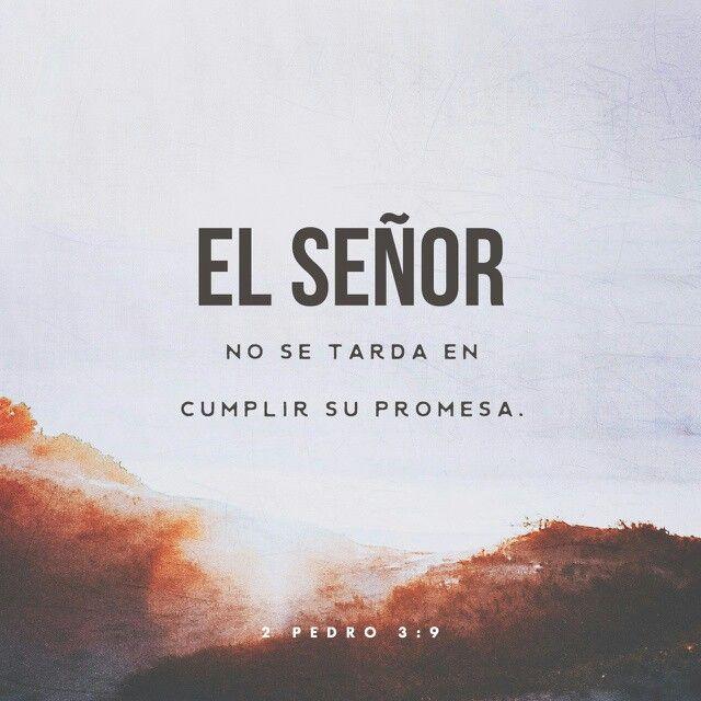 El Señor no retarda su promesa, según algunos la tienen por tardanza, sino que es paciente para con nosotros, no queriendo que ninguno perezca, sino que todos procedan al arrepentimiento. 2 Pedro 3:9 RVR1960