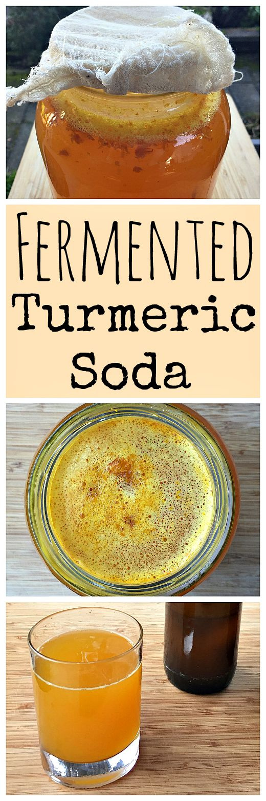 Learn how to make a naturally fermented turmeric soda using a turmeric bug! http://www.ebay.com/itm/Curcumin-Blend-60-Count-/322482882728