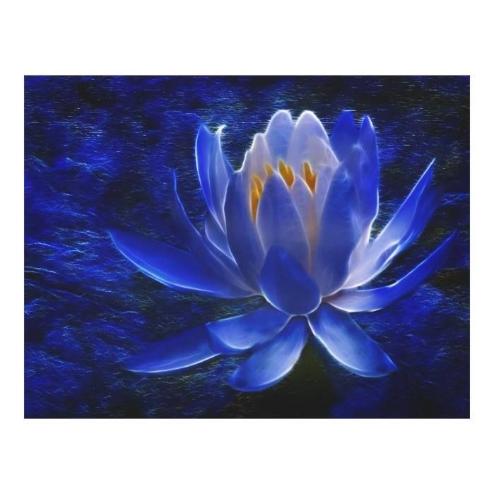 #Blue#Flower #Floral #Flower #Flower#Meaning #Flower#Photography #Flowers #Lily #Lotus #Meaning#Of#Flowers #Spring#Flowers #Summer#Flowers Lotus flower and its meaning canvas print available WorldWide on http://bit.ly/2fifKLB