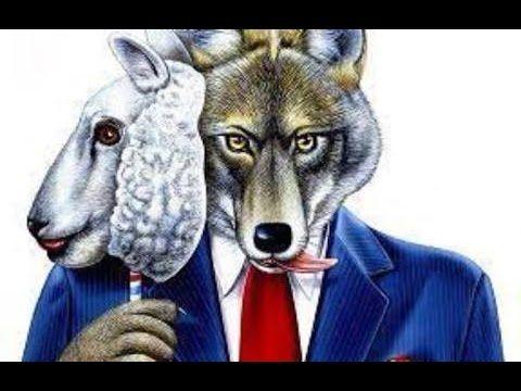 Senador Racha Lula e o PT:'Lobos guará vermelhos em pele de cordeiro'