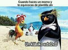 #wattpad #de-todo Memes de ambos pingüinos de Madagascar v: