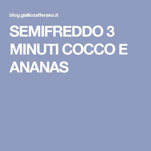 SEMIFREDDO 3 MINUTI COCCO E ANANAS