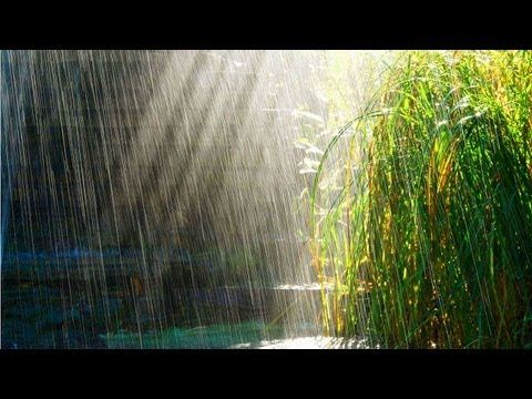 3 HOURS Relaxing Music with Rain Sounds Meditation