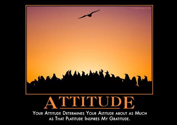 Your attitude determines your altitude essay writer
