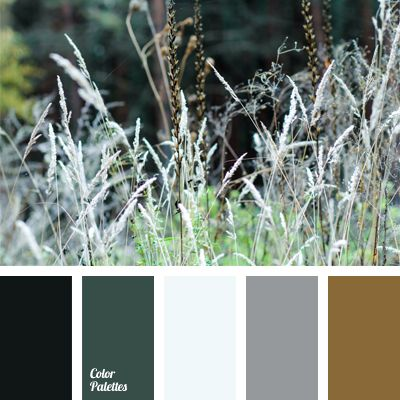 Dark colors of the forest: brown, gray, diluted with a shades of greenery look very harmonious but a little cold. This color scheme is suitable for design of office, workplace, or library. It will look appropriate in a classic wardrobe of a business women and man-director.