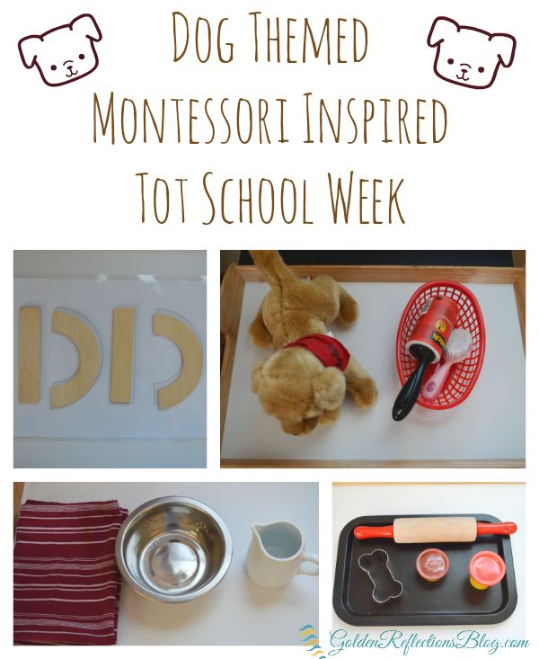 4 fun activities for a dog themed montessori inspired tot school week at home. www.GoldenReflectionsBlog.com