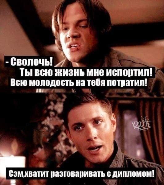 -Сволочь! Ты всю жизнь мне испортил! Всю молодость на тебя потратил! -Сэм, хватит разговаривать с дипломом! #Сэм_Винчестер #Дин_Винчестер #Мем #Сверхъестественное #Sam_Winchester #Dean_Winchester #Supernatural