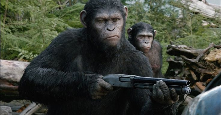 Andy Serkis and Nick Thurston in Dawn of the Planet of the Apes (2014)