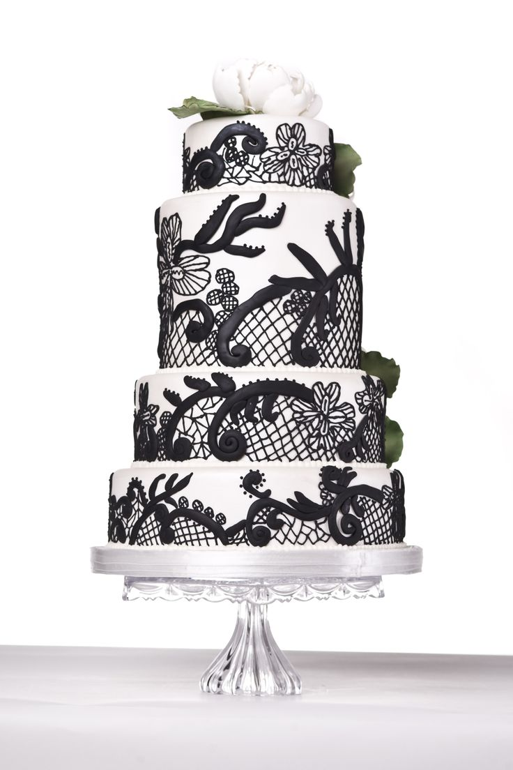 12 best wedding cake images on pinterest wedding cake wedding white and black piped cake with sugar flowers dhlflorist Image collections