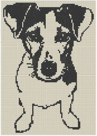 Jack Russel Terrier http://www.cartelpoker.com/freechips/