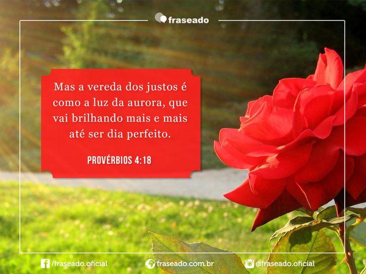 Mas a vereda dos justos é como a luz da aurora, que vai brilhando mais e mais até ser dia perfeito. Provérbios 4:18