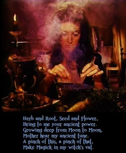 Herb and root, seed and flower, bring to me your ancient power. Growing deep from moon to moon, mother hear my ancient tune. A pinch of this, a pinch of that, make magick in my witch's vat