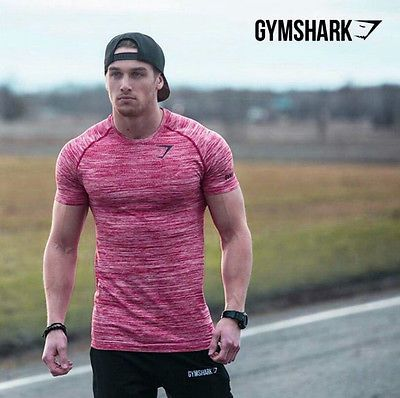 Gymshark gym shark stringer fitness t #shirt #gymshark #bodybuilding fitness shir, View more on the LINK: http://www.zeppy.io/product/gb/2/291758148363/
