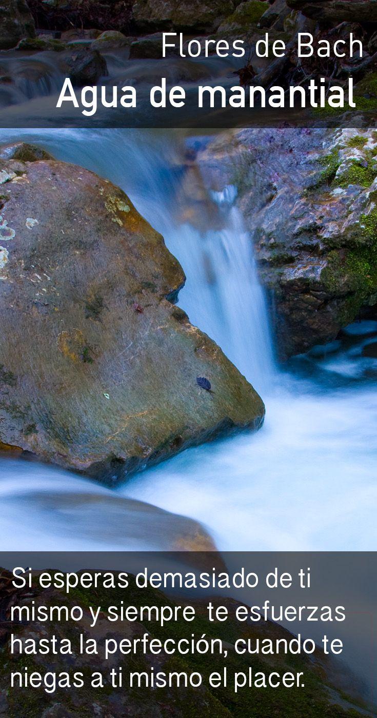 El agua de manantial promueve la flexibilidad interna, relaja el orgullo y nos alienta a disfrutar más de la vida.
