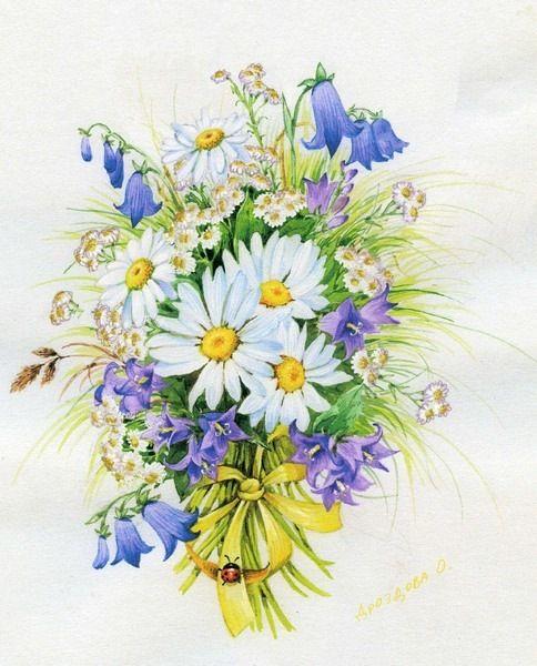 Gallery.ru / Фото #10 - Акварельные цветы Ольги Дроздовой - Mislana