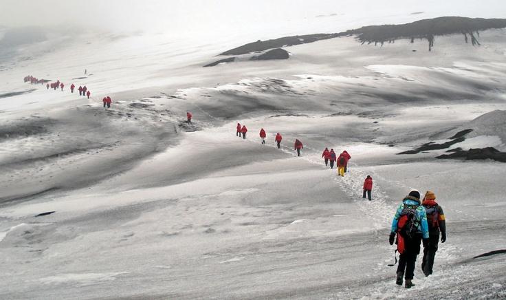 Croisière en Antarctique. Des passagers partent pour une randonnée sur les glaciers de Île de la Déception, une île volcanique des Shetland du Sud, au nord de la péninsule antarctique.  Sarah Bergeron-Ouellet / Agence QMI