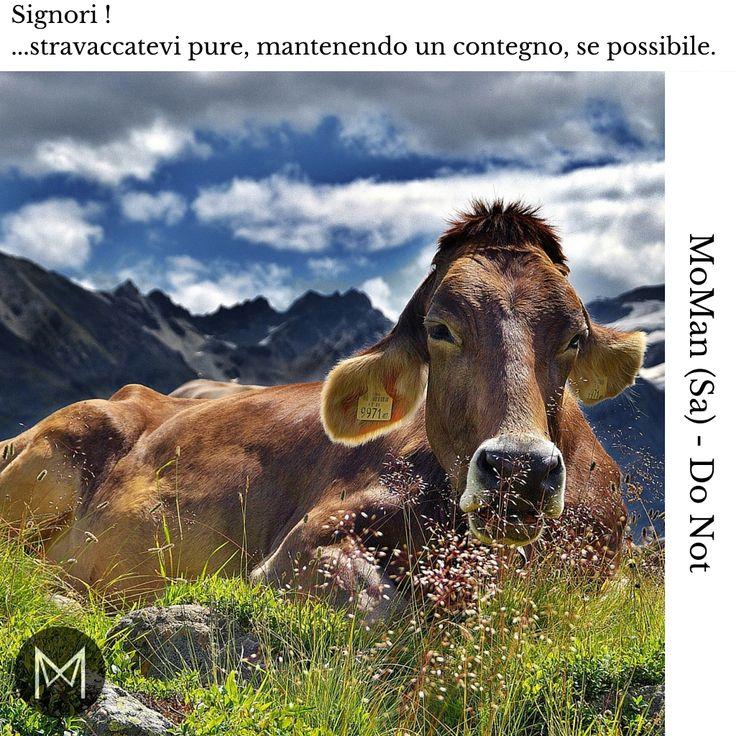 #MoMan #IlCircoloDelGentiluomo #Dont #Sabato