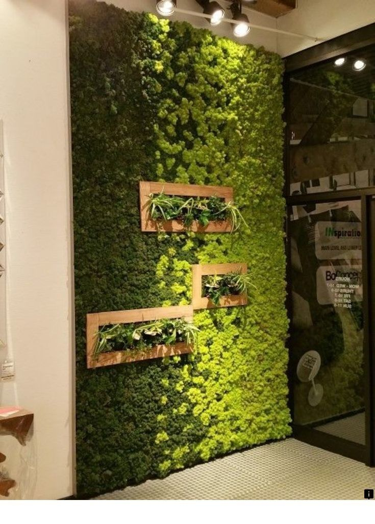 Learn More About Buddha Wall Art Follow The Link For More Info The Web Presence Is Worth Checking Out Green Wall Decor Living Wall Indoor Wall Garden