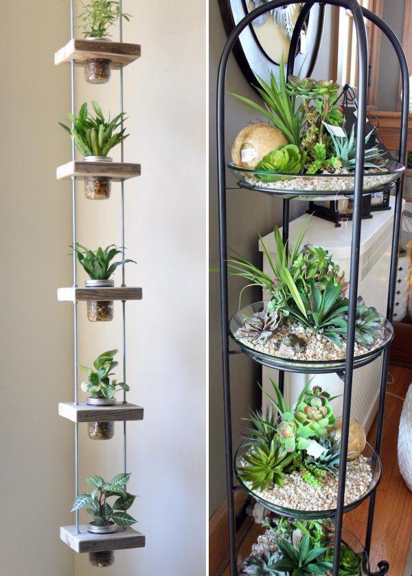 ایده های جالبی برای چیدمان گل و گیاه آپارتمانی   بانو سرا