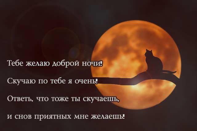 Господня открытки, картинки спокойной ночи сладких снов любимому мужчине прикольные