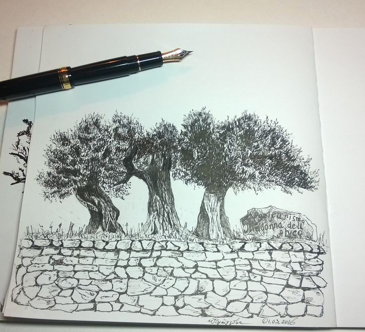 olives.  graphic arts. ink pen.