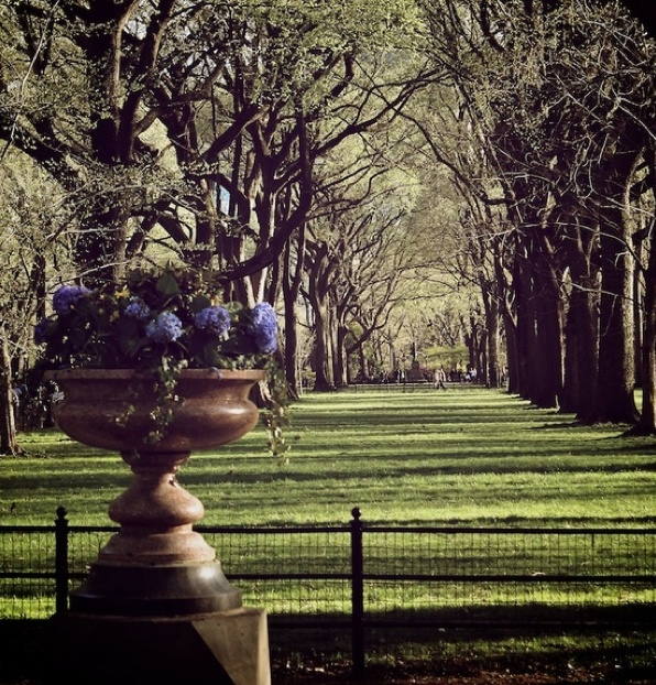 11 Best Images About Fredrick Law Olmsted On Pinterest | Parks Image Search And Central Park