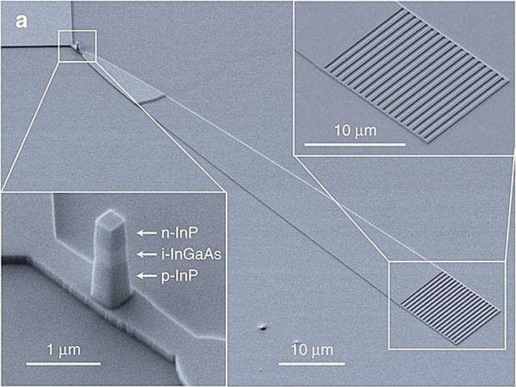 Elektronenmikroskop-Aufnahme