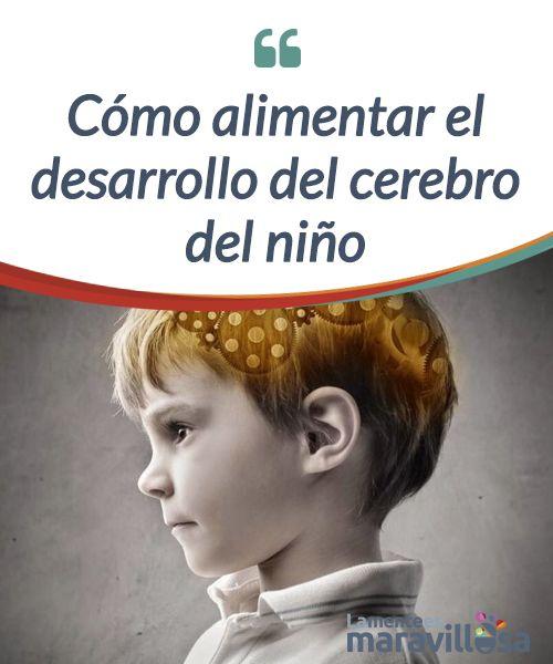 Cómo alimentar el desarrollo del cerebro del niño Los tres primeros años de vida de un niño son #cruciales para el #desarrollo de su #cerebro. Es cuando se desarrollan las #habilidades. #Psicología