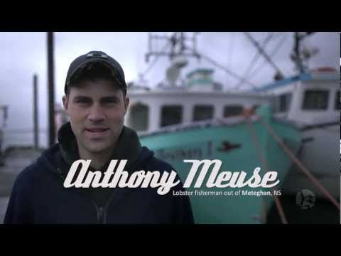 Anthony Meuse - Lobster fisherman out of Meteghan, NS - YouTube
