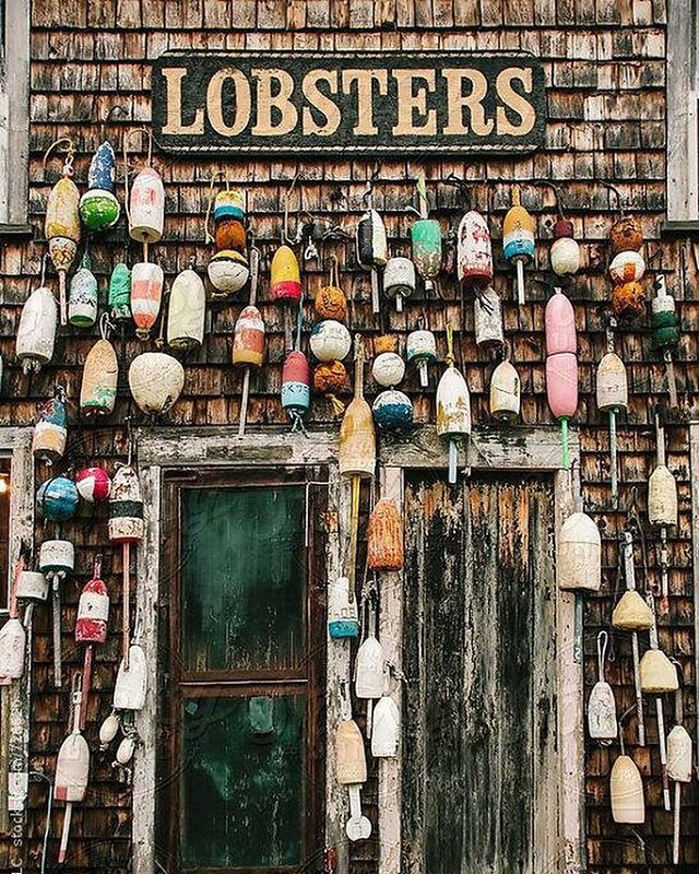 A fishing and resort area, #Bristol includes the villages of #NewHarbor, #Pemaquid, #RoundPond, #BristolMills and #Chamberlain.  This #stockphoto is available via Stocksy United search: #raymondforbesllc  #maine #bristol #lobster #buoy #bouys #lobsters #lobsterbuoy #lobsterbuoys #lobsterfishing #beachshack