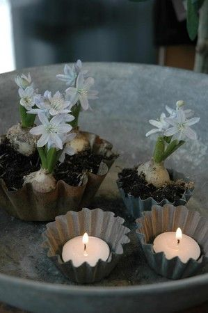 tea lights & bulbs in tin molds via @marja