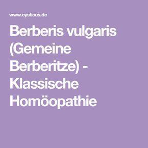 Berberis vulgaris (Gemeine Berberitze) - Klassische Homöopathie