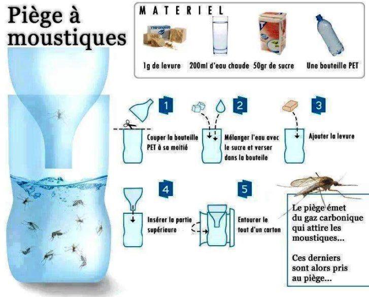 Comment faire un piège à moustiques