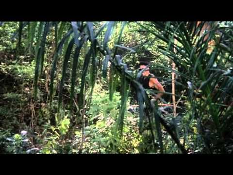 JUNGLE WARRIORS (1983)  FULL MOVIE ACTION MOVIE SET IN THE JUNGLE. SYBIL DANNING, PAUL J. SMITH, JOHN VERNON AND WOODY STRODE STAR IN THIS ACTION-PACKED ADVENTURE MOVIE