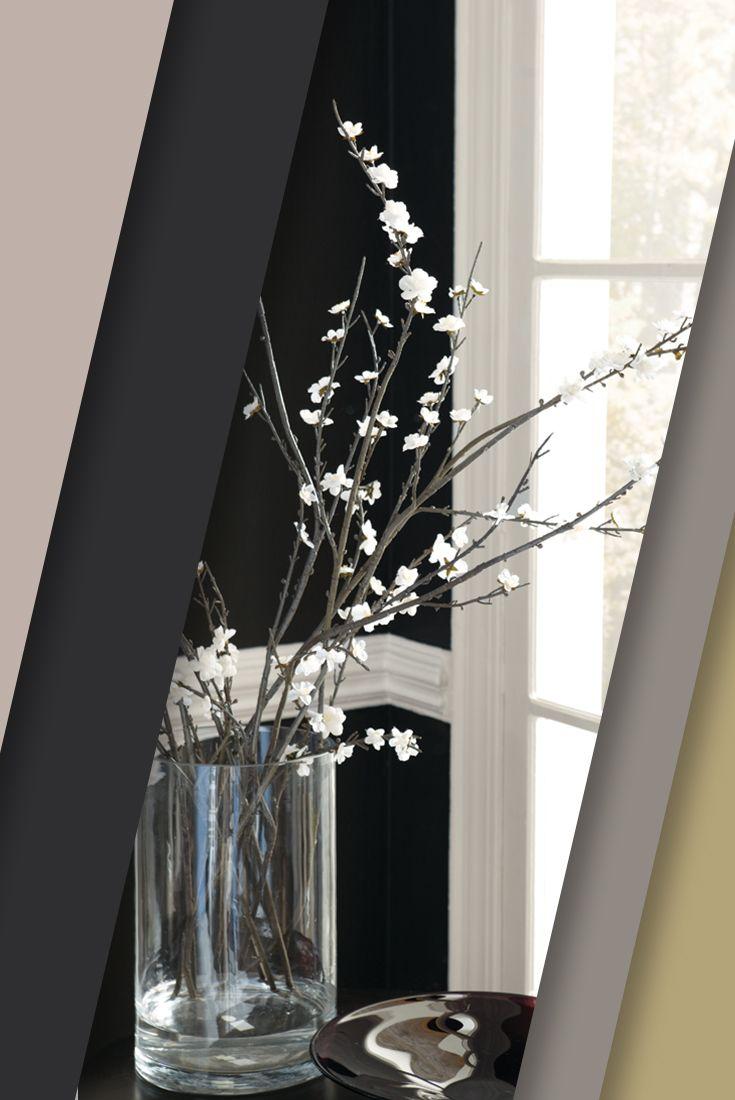 Tricorn Black Sherwin Williams 13 Best Liveable Luxe Images On Pinterest Paint Colors Color