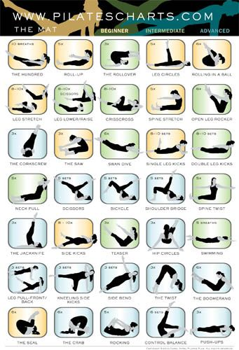 Pilates Poses Chart | Finally, a Pilates Mat poster for studio or home use. This quick ...